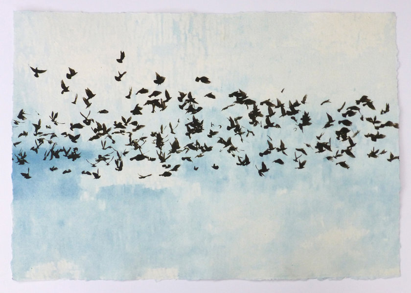 Flock of birds set against the blue sky