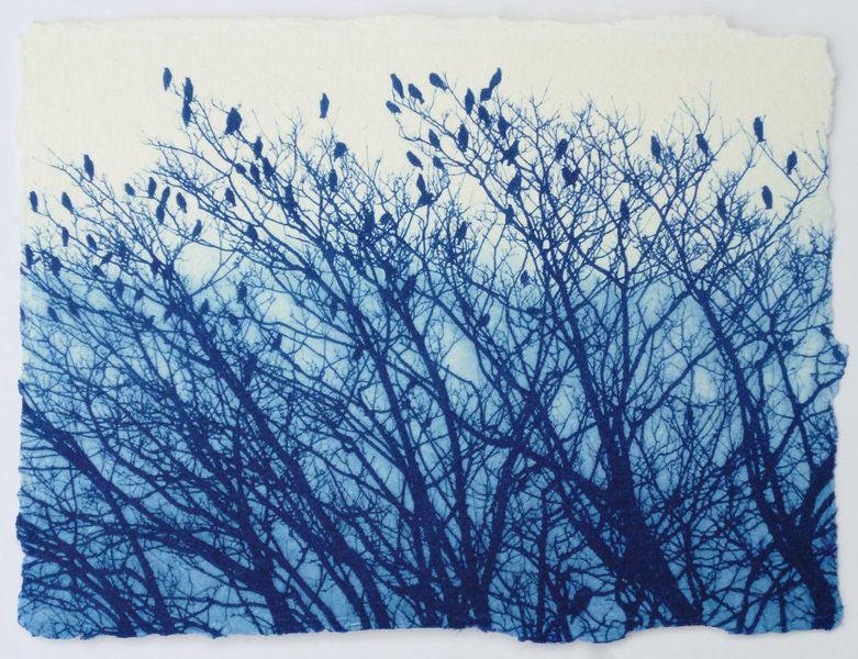 Birds sat in a tree