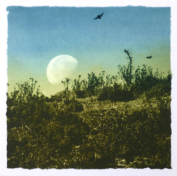 moon rising over hill with birds in the sky