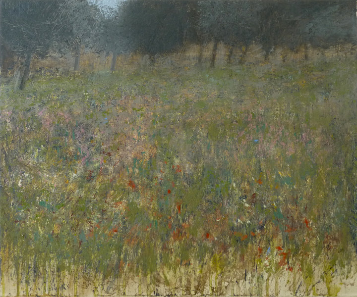 grass, flowers and trees